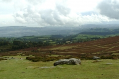 Hay Tor View