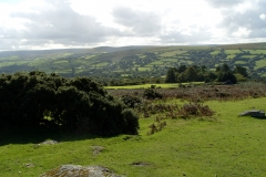 Widecombe Hill 2