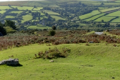 Widecombe Hill 4
